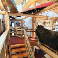 Learn about local culture and enjoy warm hospitality in Canada's North | Rahela Jagric