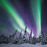 Dancing Northern Lights can be viewed right from your room at the eco-lodge | Martina Gebrovska