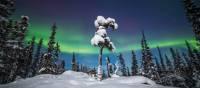 Winter under the Auroral Oval, Northwest Territories | Martina Gebrovska