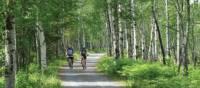 Cycling through Pt.Taillon National Park along Lac St. Jean, Quebec