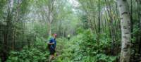 Magical forests of Charlevoix UNESCO Biosphere Reserve | Leigh McAdam