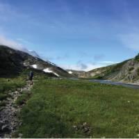 Hiking along Moose Creek | Nathalie Gauthier