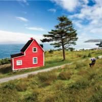 'The Cribbies' on Newfoundland's East Coast Trail   Barrett & MacKay Photo