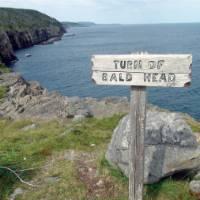 Signature East Coast Trail signage   Keri May