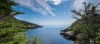 A wilderness path along Newfoundlan's Avalon Peninsula   Sherry Ott