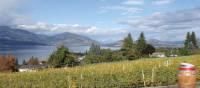 Kettle Valley winery and Okanagan Lake | Annika Rautiola