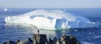 An icy giant moves along Newfoundland's coast