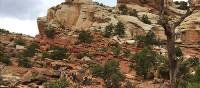 Trail through the heart of Capitol Reef | Jake Hutchins