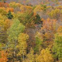 The famous fall colours of Vermont | VisittheUSA.com