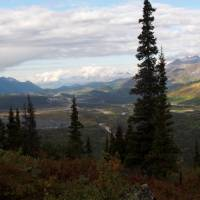 Looking out across Denali National Park | Jake Hutchins