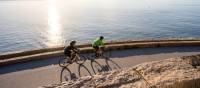 Oceanside Cycling