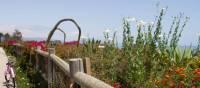 Biking to Butterfly Beach, Santa Barbara, CA | Visit Santa Barbara / Cecilia Rosell