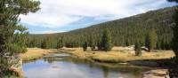 The Sierra Nevada's's densely-forest valleys | Ken Harris