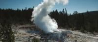 Old Faithful erupting in Yellowstone National Park | Sue Badyari