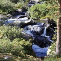 Serene forest waterfall in California's Sierra Nevada | Ken Harris
