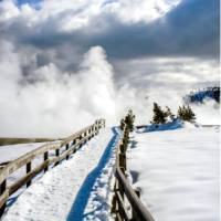 Blue skies overhead as we explore the beauty of Yellowstone National Park